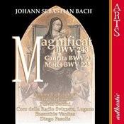 Magnificat BWV243, D Major: Deposuit Potentes (Bach) Song