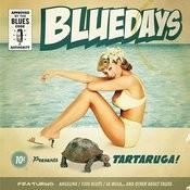 Tartaruga Songs