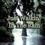 Just Walkin' In The Rain Songs