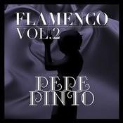 Flamenco: Pepe Pinto Vol.2 Songs