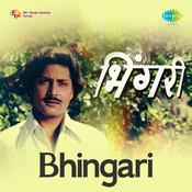 Bhingari Mar Songs