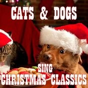 Cats And Dogs Sing Christmas Classics Songs