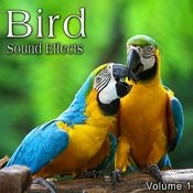 Bird Sound Effects, Vol. 1 Songs
