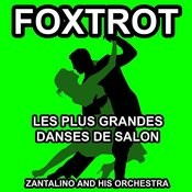 Mon Premier Fox Song