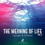 The Meaning Of Life (Lounge & Chillout) Vol. 2 Songs