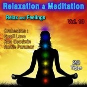 Relaxation & Meditation Vol. 10: Relax And Feelings Songs