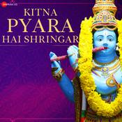 Kitna Pyara Hai Shringar - Krishna Bhajan Song