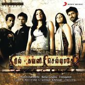 Nil Gavani Selladhey Songs