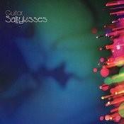 Saltykisses Songs