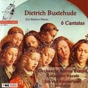 Jesu, Meines, Lebens Leben (Bux WV 62): Sinfonia, Aria Song