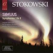 Symphony No. 2 In D Major, Op. 43: I. Allegretto Song