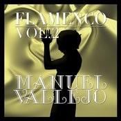 Flamenco: Manuel Vallejo Vol.2 Songs