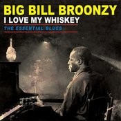 I Love My Whiskey - The Essential Blues Songs
