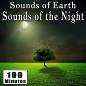 Sounds Of Earth: Sounds Of The Night Songs