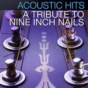 Acoustic Hits - A Tribute To Nine Inch Nails Songs