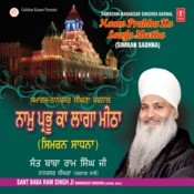 Naam Prabhu Ka Laaga Meetha (Simran Sadhna) Songs