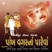 Kaayam Rahya Chhe Aapna Song