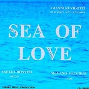 Sea Of Love Song