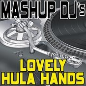 Lovely Hula Hands (Original Radio Mix) [Re-Mix Tool] Song