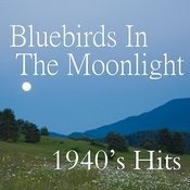 Bluebirds In The Moonlight Songs