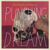 Punching In A Dream Songs