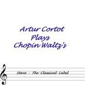 Plays Chopin Waltz's Songs