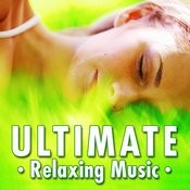 Selfless Love For Deep Relaxation And Tranquility Song