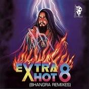 Dj Rj Pumps It Up MP3 Song Download- Extra Hot 8 (Bhangra Remixes