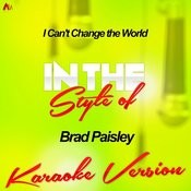 I Can't Change The World (In The Style Of Brad Paisley) [Karaoke Version] Song