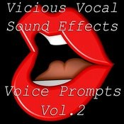 Vicious Vocal Sound Effects 11 - Voice Prompts Vol. 2 Songs
