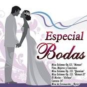 Especial Bodas Songs