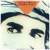 Tuareg's Melody Song