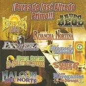 ¡puras De José Alfredo Primo!!! Songs