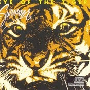 Eye Of The Tiger Songs