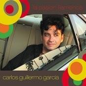 La Pasion Flamenca Songs