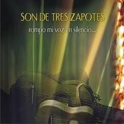 Rompo Mi Voz En Silencio... Songs