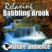 Tranquil Brook Babbling Softly For Wellness And Spiritual Growth Song