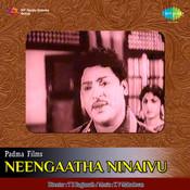 Neengaatha Ninaivu Songs