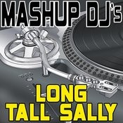 Long Tall Sally (Remix Tools For Mash-Ups) Songs