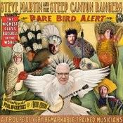 Rare Bird Alert Songs