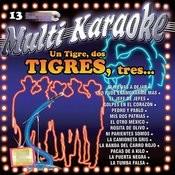 Un Tigre, Dos Tigres, Tres.... Songs
