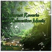 Rainforest Reverie With Relaxation Music Songs