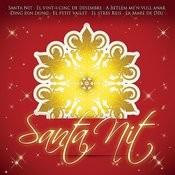 Santa Nit Song