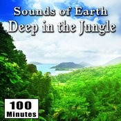 Sounds Of Earth: Deep In The Jungle Songs