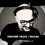 Pulsar Songs