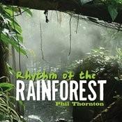 Rhythm Of The Rainforest Songs