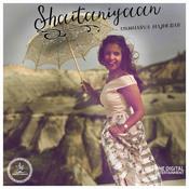 Shaitaniyaan Song