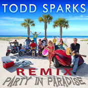Party in Paradise (Remix) [feat. Nadirah Shakoor, Peter Mayer & Doyle Grisham] Song