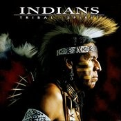 The Last Of The Mohicans MP3 Song Download- Tribal Spirit
