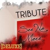 See No More (Joe Jonas Tribute) - Deluxe Single Songs